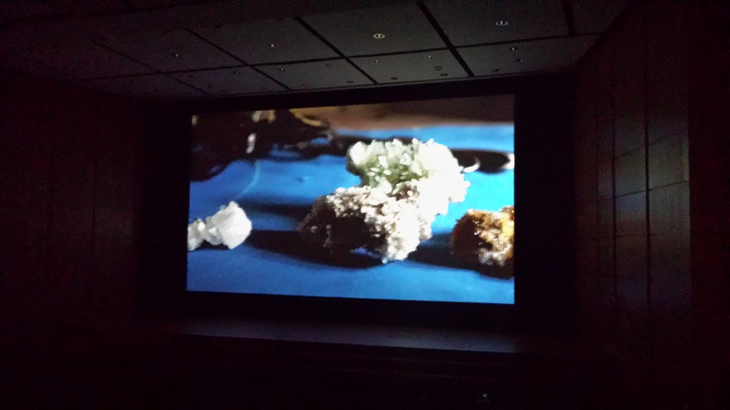 Arrastre by Nicholas Brooks on screen at Northwest Film Centre, Portland